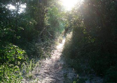 itinerati_mountain_bike_saline_castello_natura-4