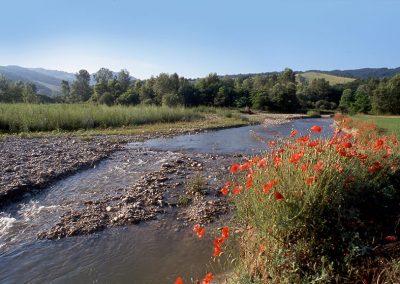 Parco dello Stirone e Piacenziano- Torrente Stirone